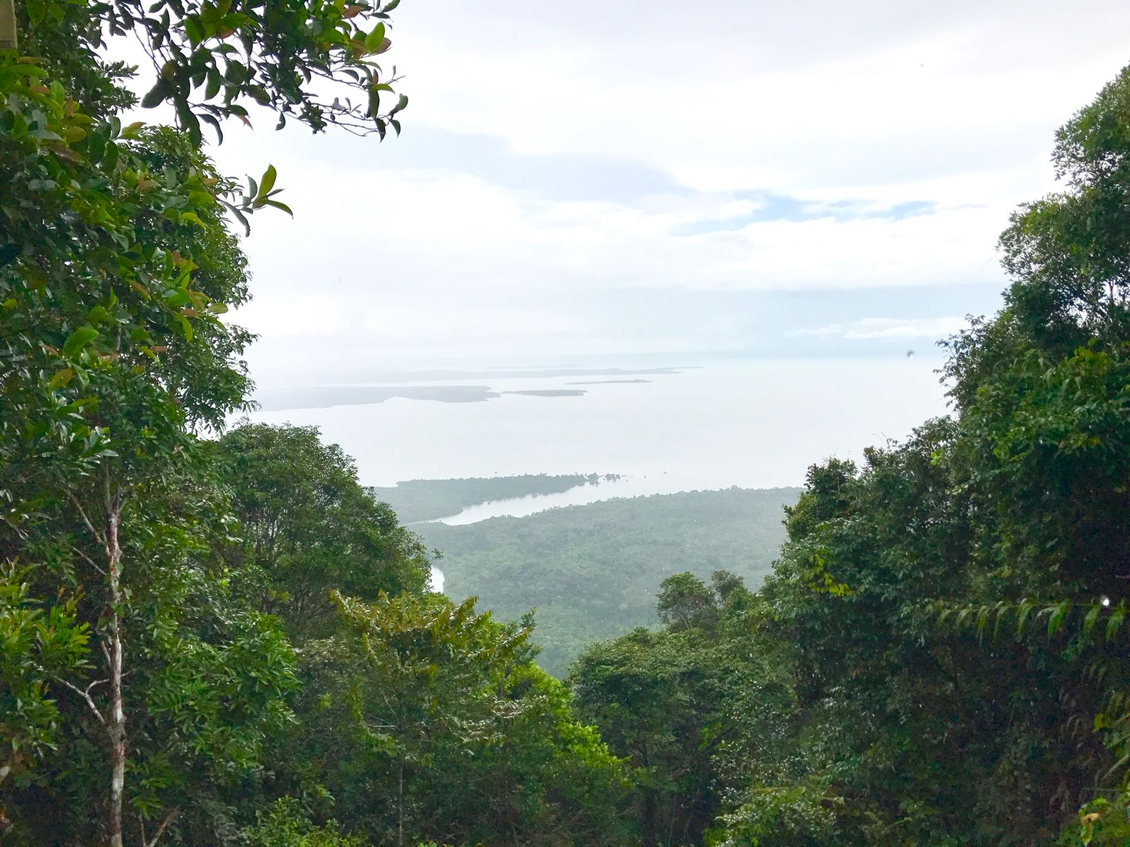 Trekking @ Bintan Mountain