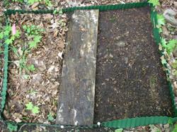 Litter plot R1-01 half veg and litter removed 21May08.JPG