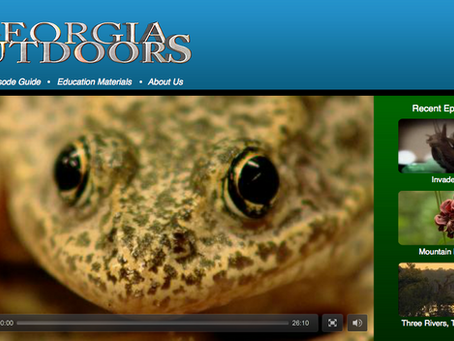 Georgia Outdoors documentary profiles our collaborative effort to save the endangered frogs
