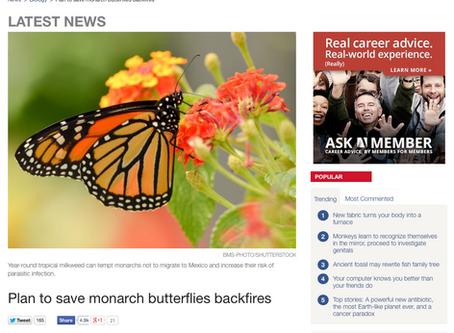 Nonnative milkweed affecting migration behavior and disease dynamics of monarch butterflies.