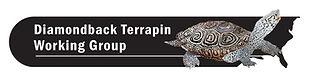 DTWG-logo-11-30-2006-letterhead.jpg