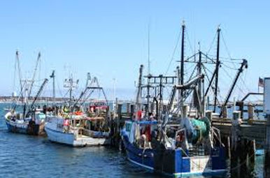State and Federal Financial Aid to Local Fishing Industry