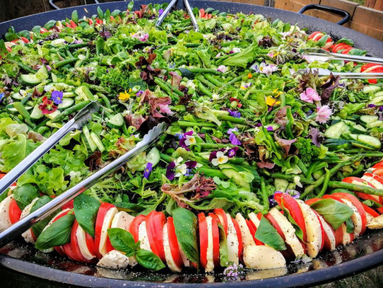Green and Caprese Salads