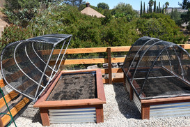Custome hinged hoop houses for extra protection
