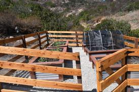Cedar fence with metal mesh