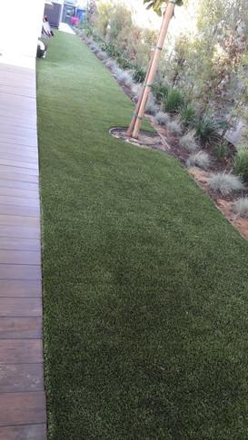 Artificial turf in a low-water backyard