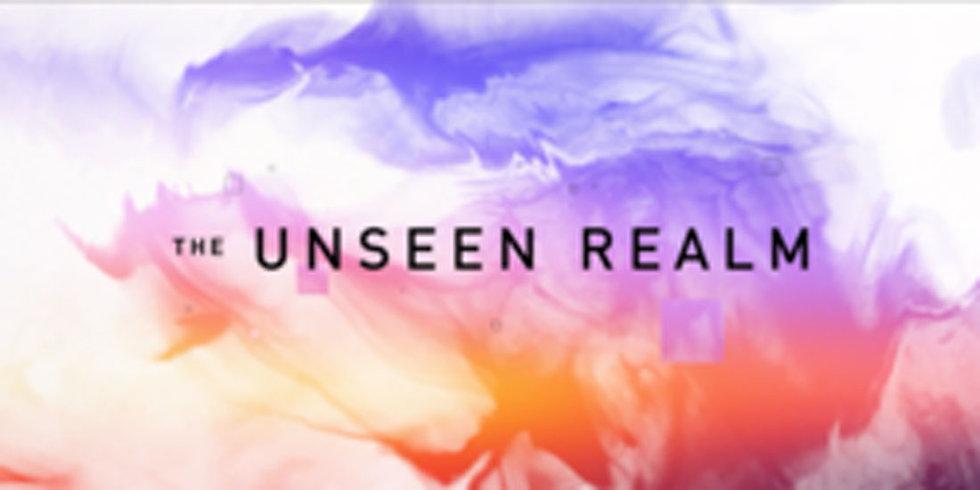 The Unseen Realm (DVD Film) - Michael Heiser