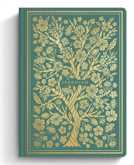 ESV Illuminated Scripture Journal: JEREMIAH