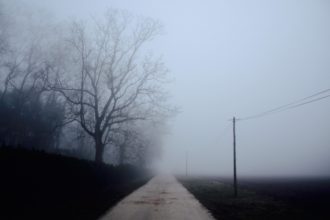 Brume dans le Tarn, France