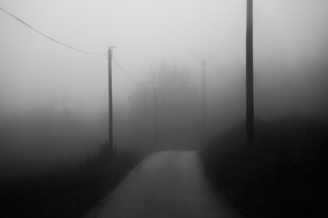 Brouillard monochrome, Hérault, France