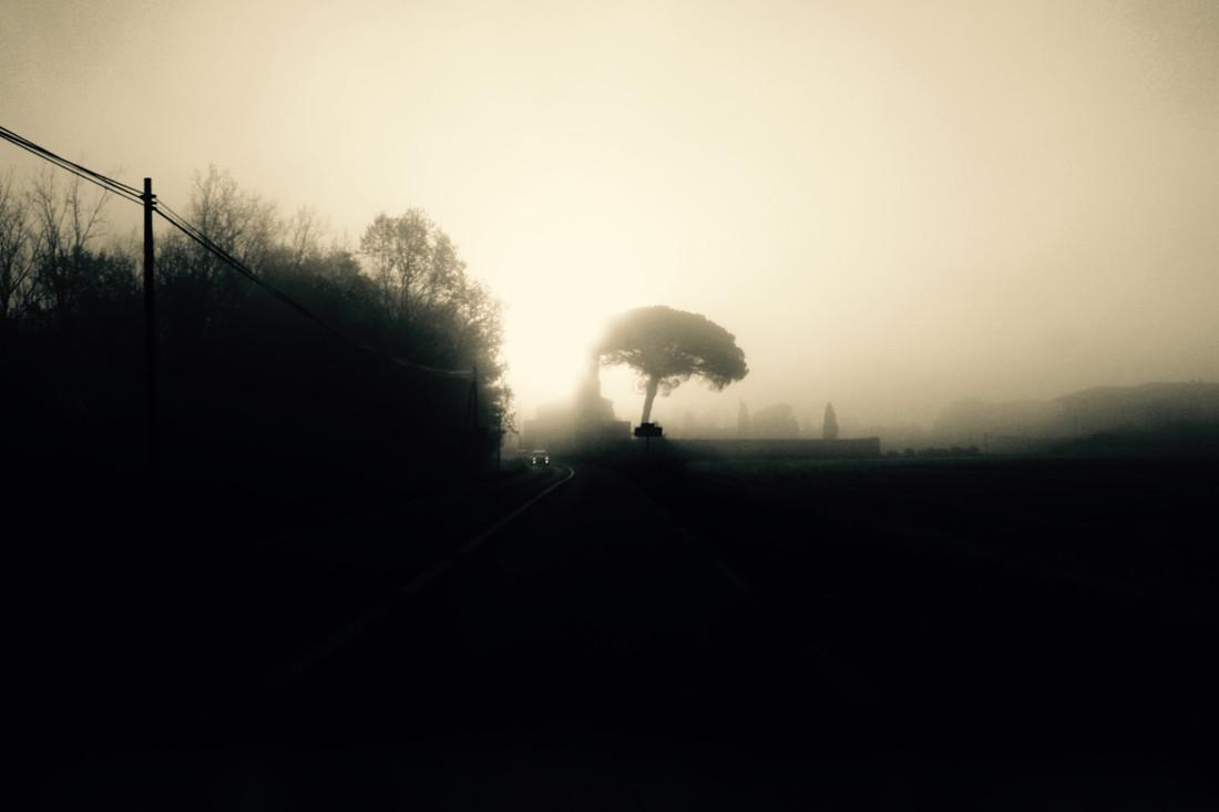 A travers la brume, Tarn, France