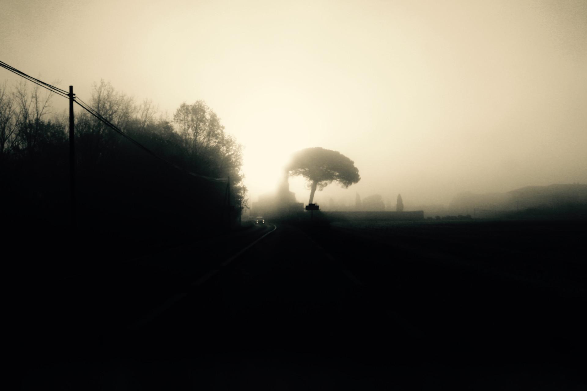 Tarn, France