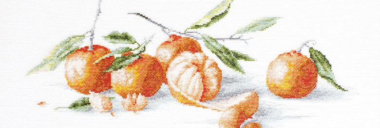 B2255 Tangerine Still Life - Cross Stitch Kit Luca-S