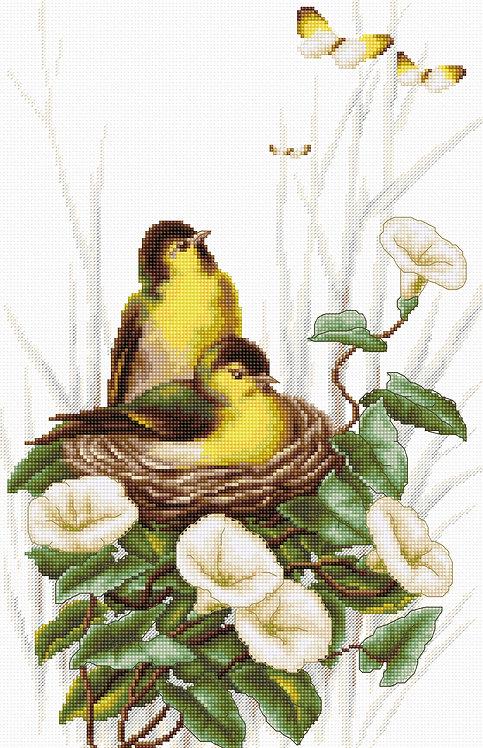 B2240 Birds in the nest