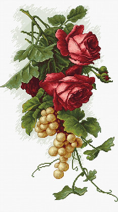 Red roses and grape