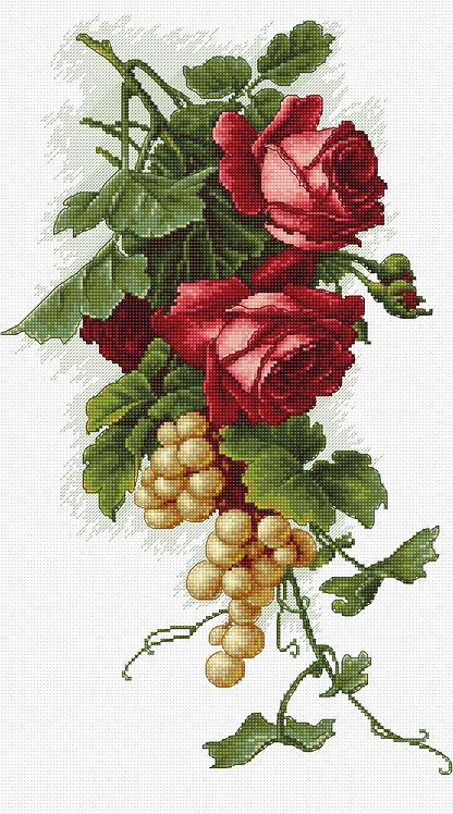 B2229 Red roses and grapes