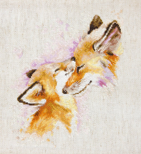 B2312 Foxes