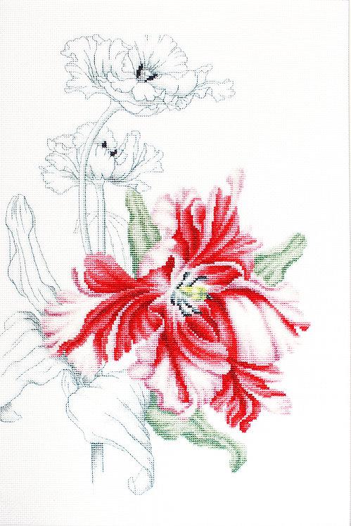 B2241 Red Tulips