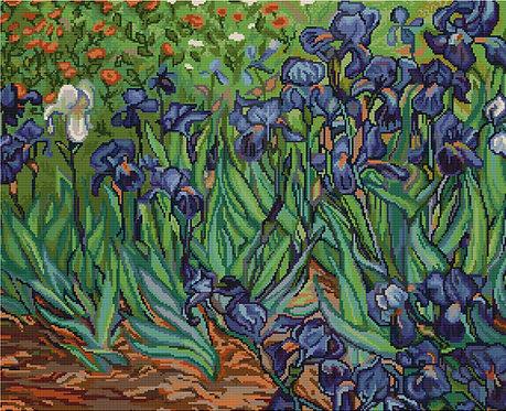 B444 Irises, reproduction of Van Gog