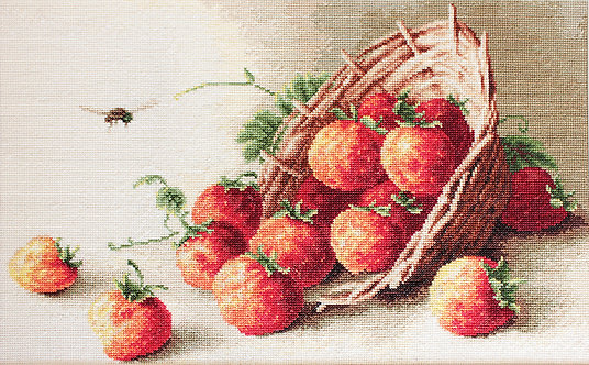 G497 Basket of strawberries