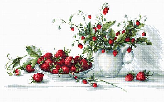 B2277 Strawberries