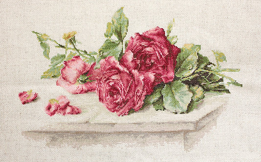 BL22411 Red Roses