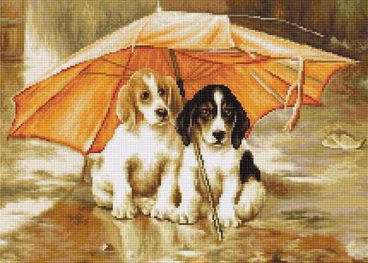 B550 Couple under an Umbrella