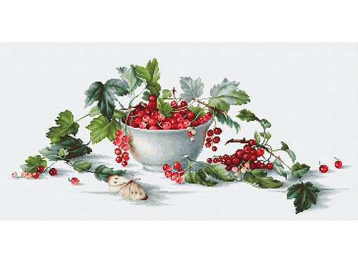 B2260 Red Currants