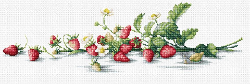 B2266 Etude with strawberries - Cross Stitch Kit Luca-S