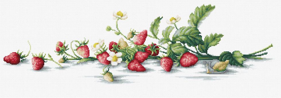 Etude with strawberries