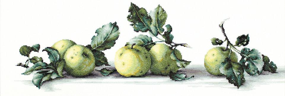 B2259 Still life of apples - Cross Stitch Kit Luca-S