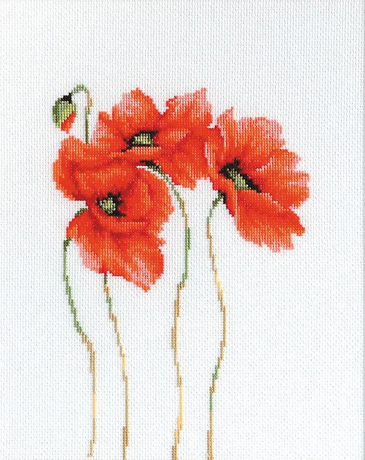 B2224 Poppies