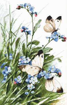 LETI 939 Butterflies and bluebird flowers