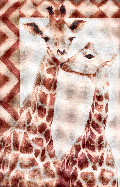 B2216 Giraffes