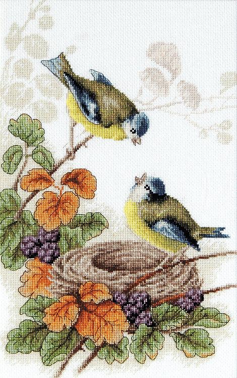 B215 Birds in nest