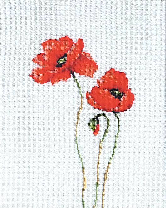B2225 Poppies