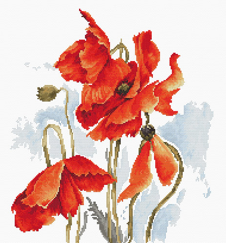 B2374 The Poppies