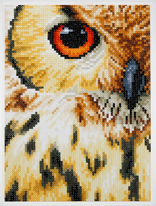 Owl - Lanarte - Kit Punto Diamante