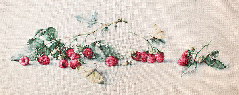 BL2253 Raspberries with Butterfly