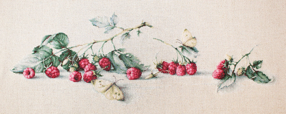 Raspberries with the butterfly