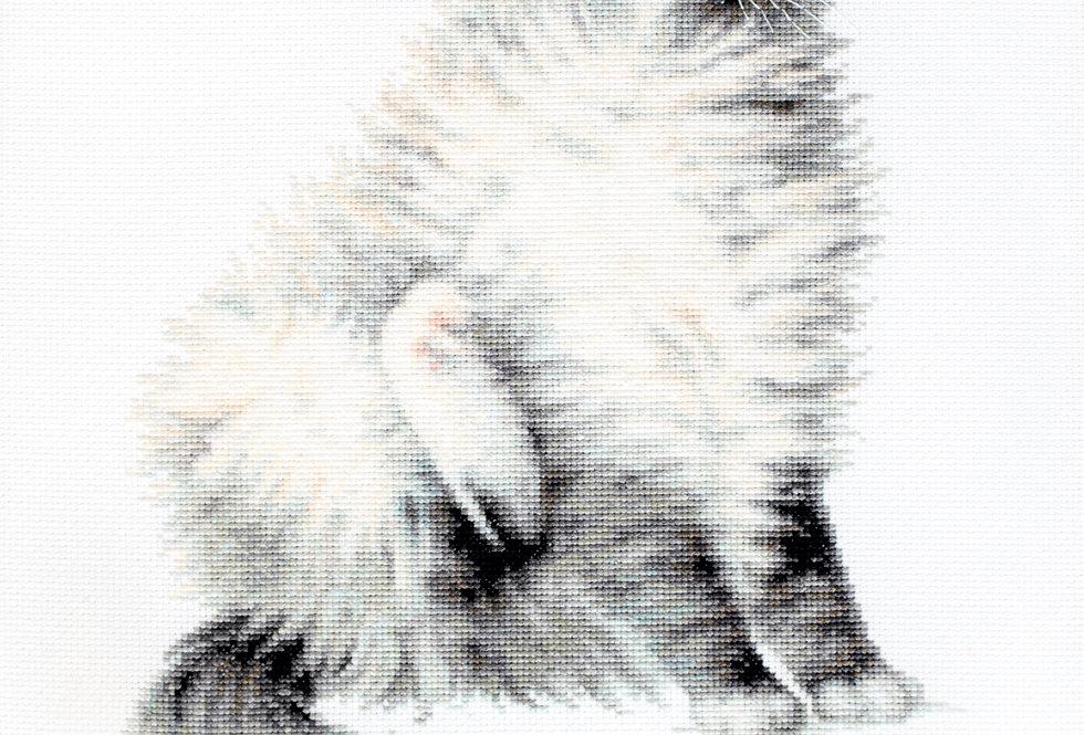 B2269 The Micky Kitty - Cross Stitch Kit Luca-S