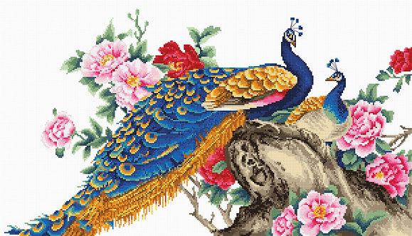B460 Two Peacocks