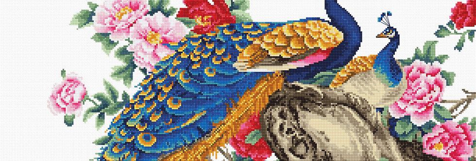 B460 Peacock - Cross Stitch Kit Luca-S