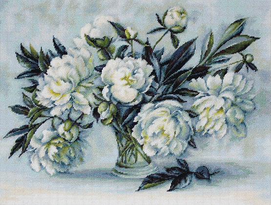 The white peonies