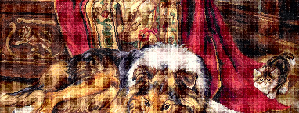 B585 A Reluctant Companion - Cross Stitch Kit Luca-S