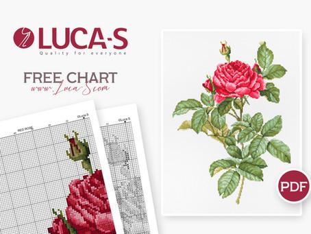 Free Chart - Red Rose.pdf
