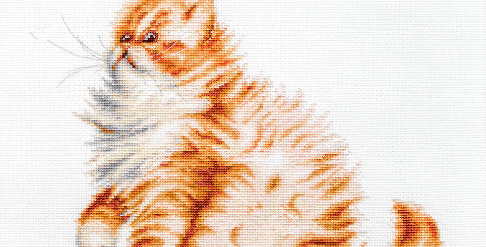 B2270 Kitten with a dragonfly - Cross Stitch Kit Luca-S