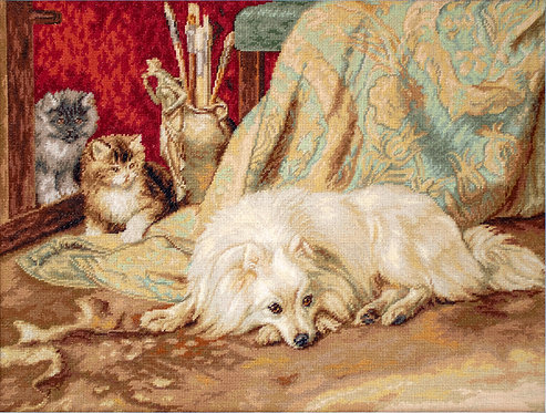 B582 The Dog and Cats