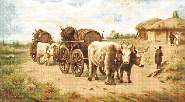 B579 Car cu boi,după pictura lui Theodor Aman