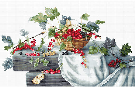 B2262 Red Currants